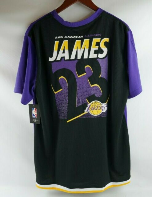 Purple Los Angeles Lakers T Shirt : Nba Los Angeles Lakers Lebron James 23 Purple Shooting Shirt Men S Size M For Sale Online Ebay