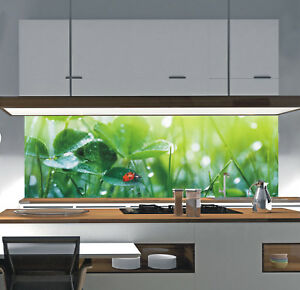 Küchenrückwand Acrylglas Spritzschutz Fliesenspiegel nach Maß PLEXIGLAS® SP628 eBay