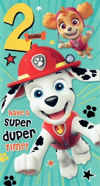 Paw Patrol 2nd Birthday Card Wrong Picture Its The Green Age 2 For Sale Online Ebay