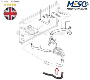 RADIATOR LOWER BOTTOM HOSE PIPE FORD TRANSIT MK6 20002003