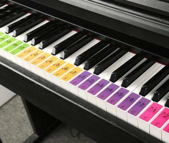 Removable  Key Electronic Keyboard Piano Key Note Stickers