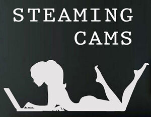 Image Is Loading Steamingcams Com Aged Brandable Domain Name For Adult
