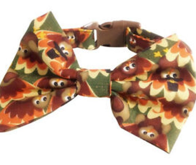 Image Is Loading Spiffy Pooches Dog Collar Thanksgiving Turkey Fall Bow