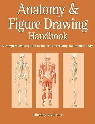 Anatomy and Figure Drawing Handbook : A Comprehensive ...