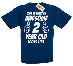 This Is Awesome 2 Year Old 2nd Birthday Gift Ideas T Shirt For 2 Year Old Boys Ebay