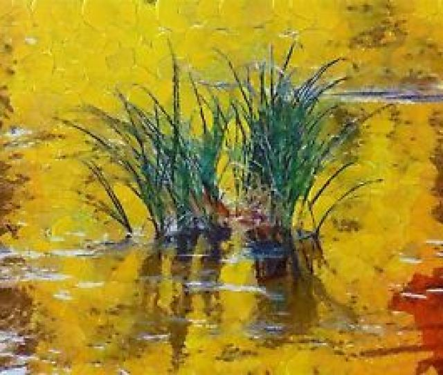 Image Is Loading Abstract Painting Nature Landscape Reed Reflection Pond Poster