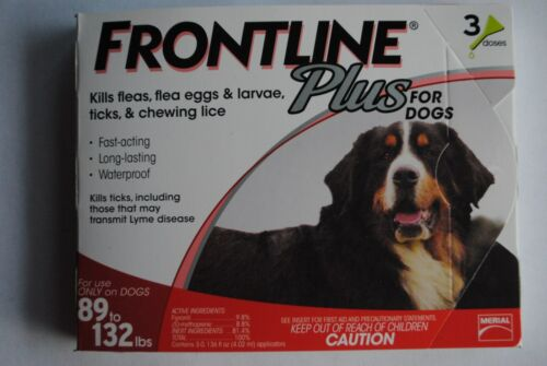 Frontline Large Dogs