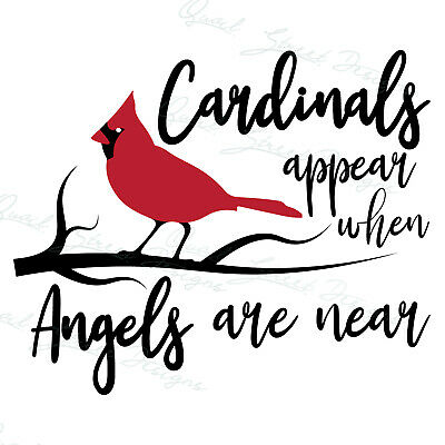 Download Cardinals Appear When Angels Are Near - Loss of Loved ...
