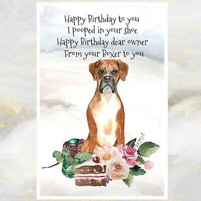 Boxer Dog Birthday Card Funny Boxer Dog Greetings Card Boxer Dog Card Ebay