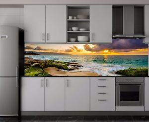 Acrylglas Spritzschutz Herd Küchenrückwand Fliesenspiegel alle Größen SP546 eBay