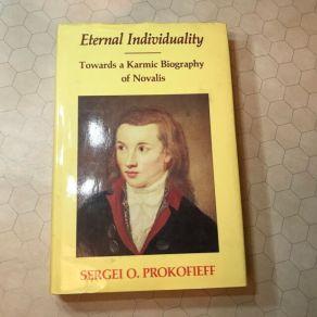 Eternal Individuality Towards a Karmic Biography of Novalis Prokofieff  Sergei o. | eBay