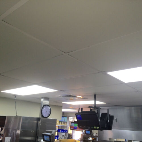ecotile smooth 2 x 4 white lay in tile mold free washable pvc ceiling tiles