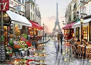 Diyasy Paint By Numbers For Adults Diy Oil Painting Number London Canvas Ebay