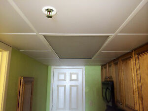 details about washable pvc ceiling tiles ecotile smooth 2 x 2 white drop tile mold free