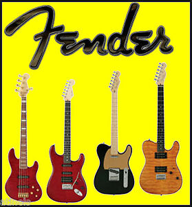FENDER Over 800 Guitar Amps Amplifier Diagrams WIRING