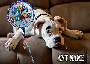 Personalised White Boxer Dog Birthday Card Glossy A5 Size Colour Illus Insert Ebay