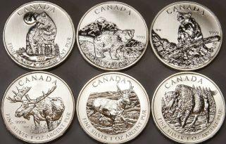 1 OZ Unze Silber 9999 Feinsilber Münze Canada 2013 Antilope Anlage Barren RAR