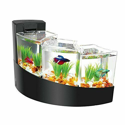 coffee table aquariums for sale in