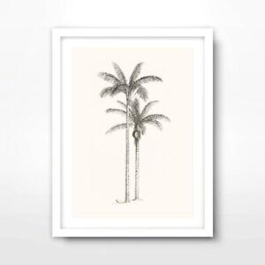 palm tree line drawing tropical art