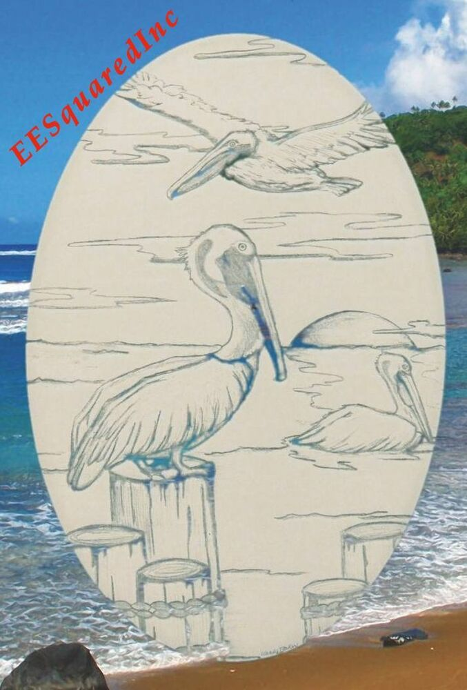 New Oval 21x33 Pelican Scene Static Cling Window Decal