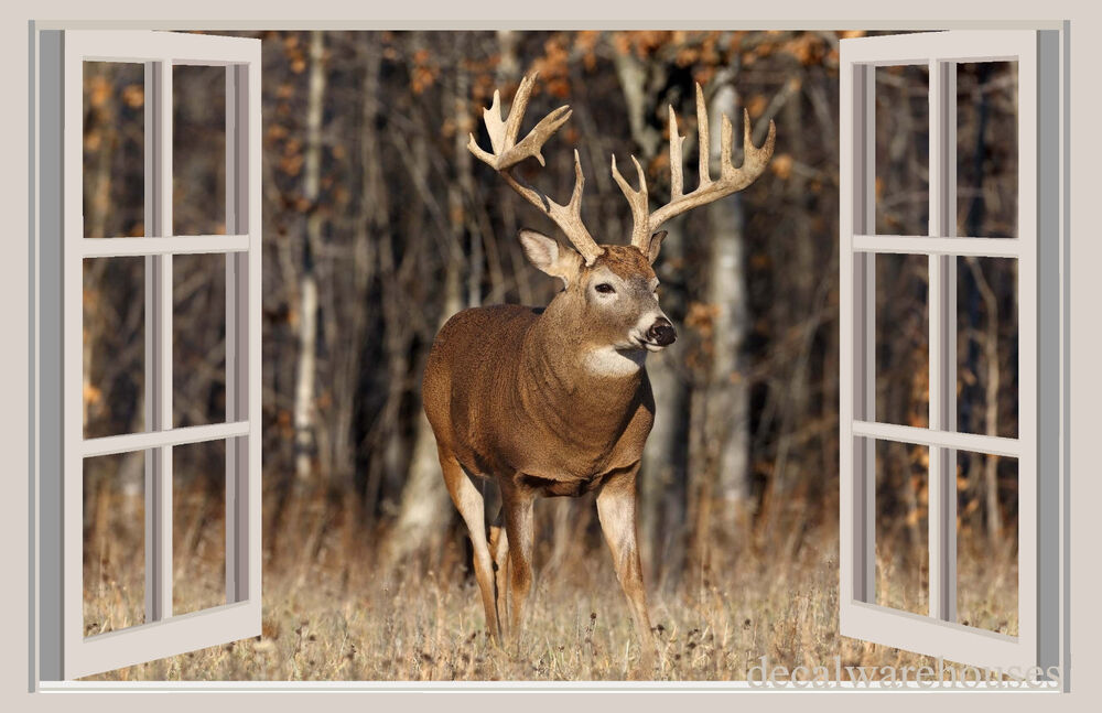 Deer Amp Forest Window View Repositionable Color Wall Sticker Wall Mural 3 FT EBay
