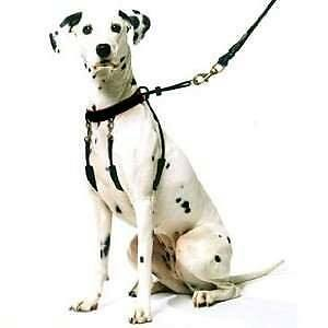 Yuppie Puppy Anti Pull Dog Puppy Harness All Sizes
