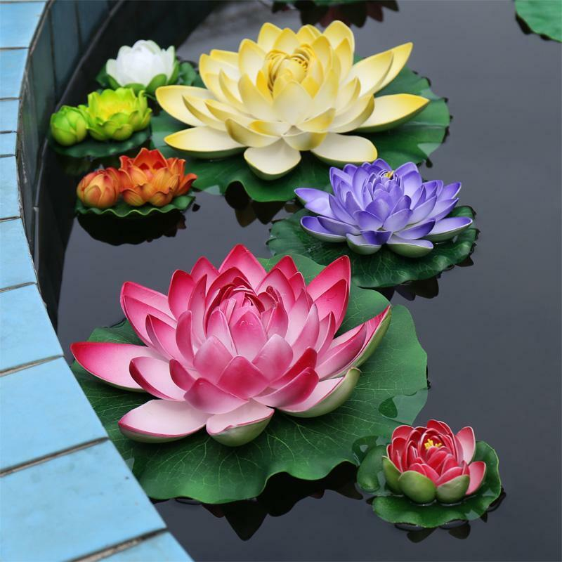 Where Buy Floating Pond Plants