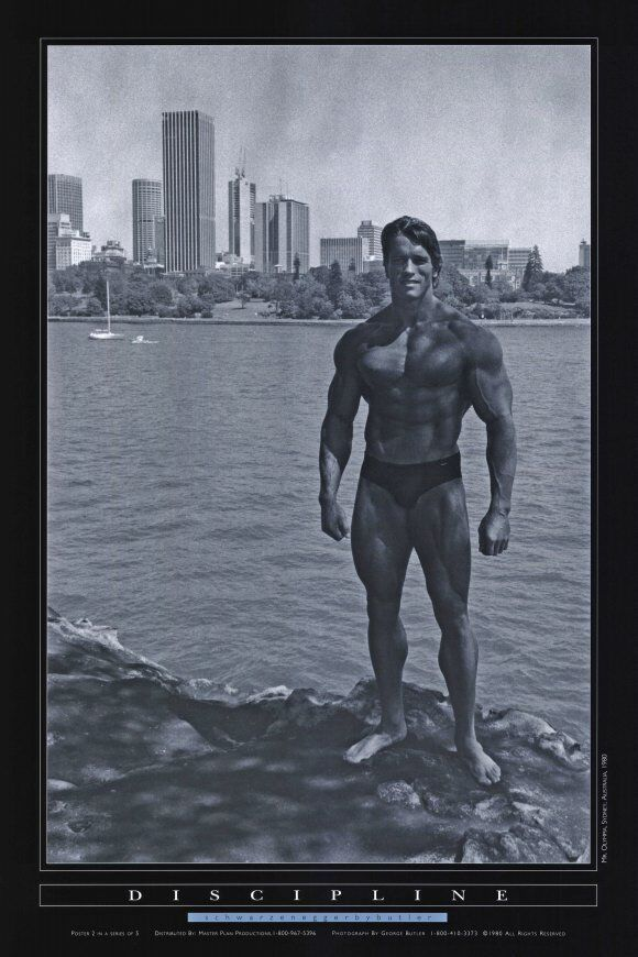Posters Schwarzenegger Arnold High Quality