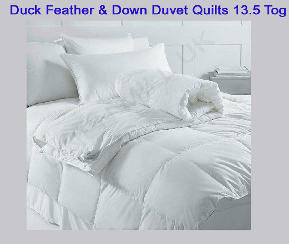 King Size Quilt Feather