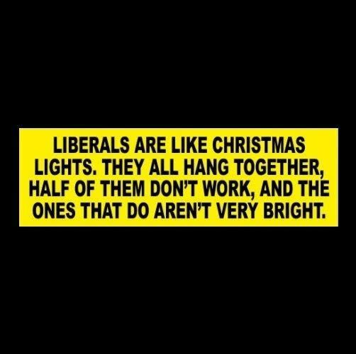 Funny LIBERALS ARE LIKE CHRISTMAS LIGHTS Anti Hillary