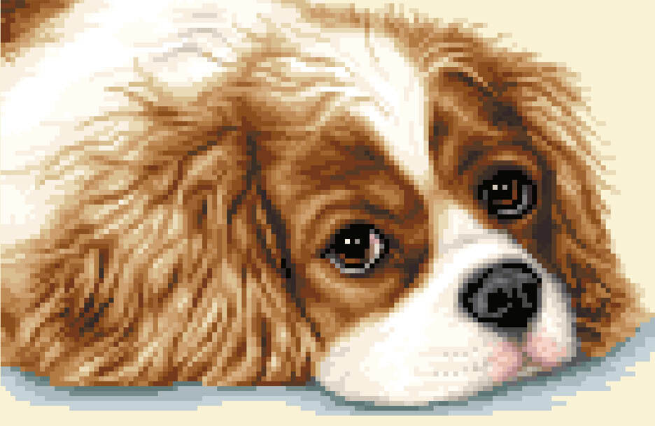 CAVALIER KING CHARLES SPANIEL Complete Counted Cross