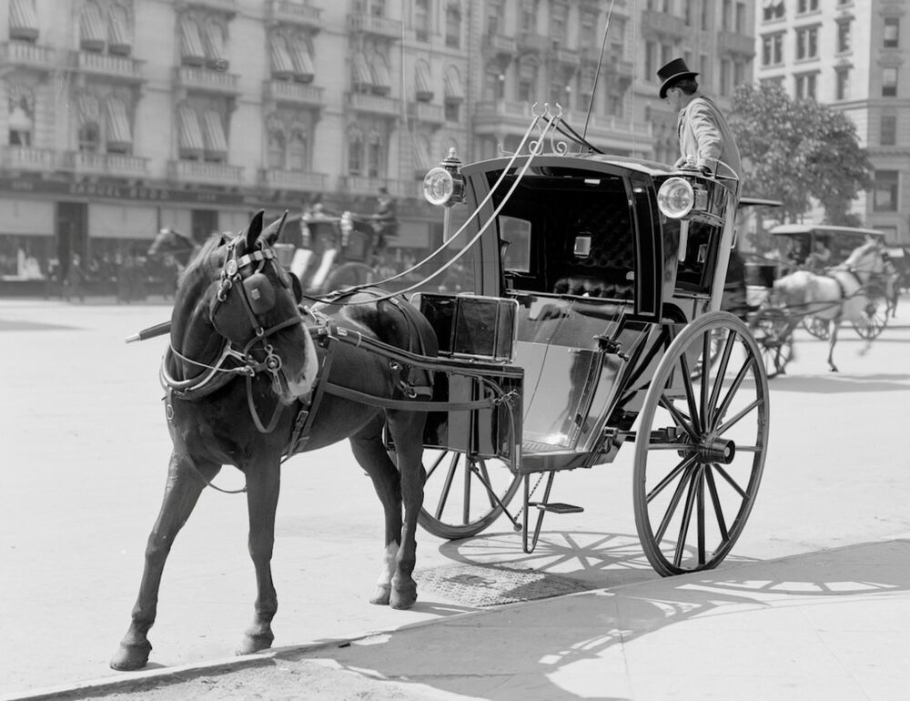 Horse Buggy 1904 And