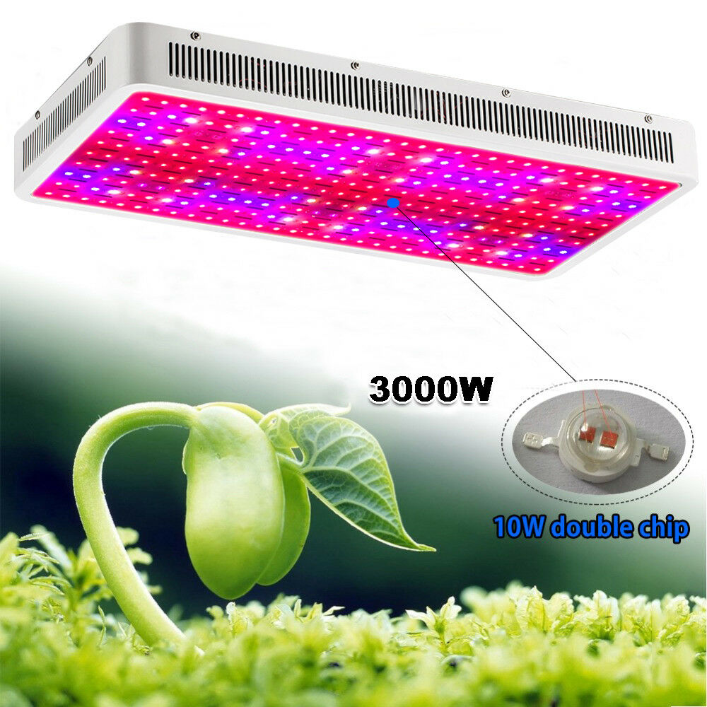 Led Grow Light Distance Plant