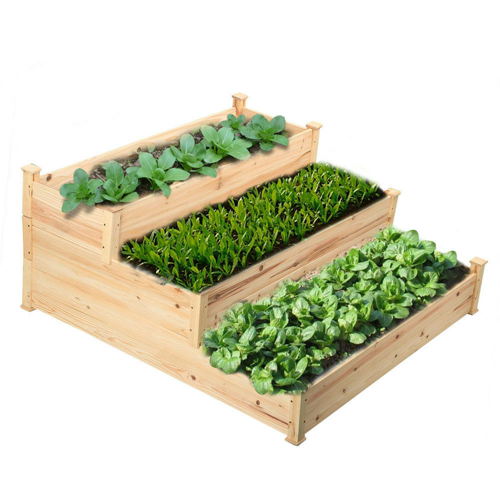 Vegetable Garden Box Kits