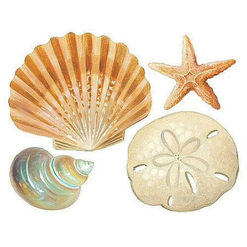 WALLIES SHELLS Wall Stickers 24 Decals Bathroom DECORATION