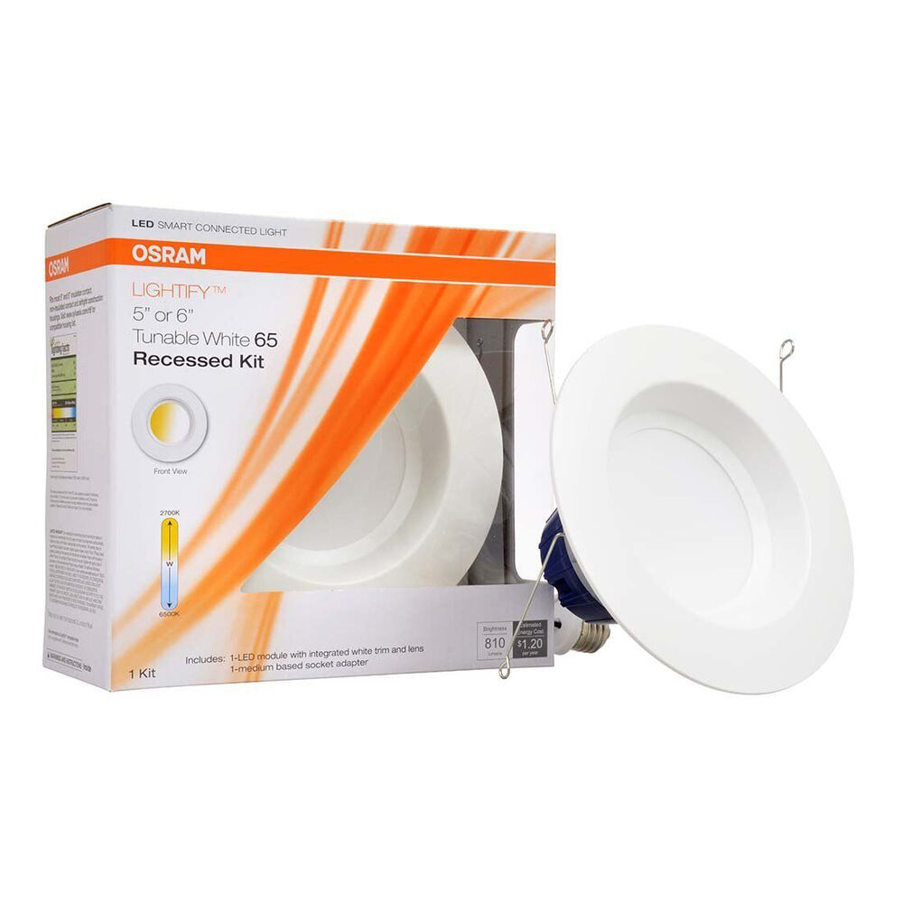 300 Watt Daylight Bulbs
