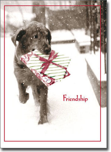 Dog Carrying Present In Snow 10 Black Lab Boxed Christmas