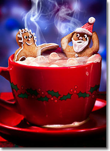 Ginger Bread Couple 10 Funny Boxed Christmas Cards By