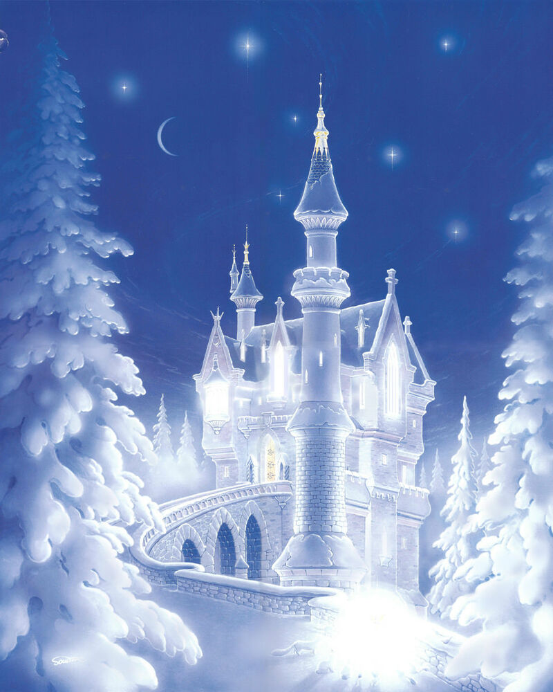 Cinderella Snow Castle Christmas Frozen Froz Fairy Matted