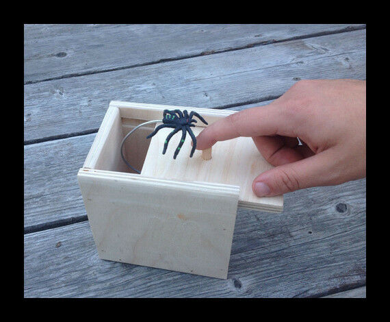 Hilarious SPIDER SCARE BOX Natural PRANK Funny Gag
