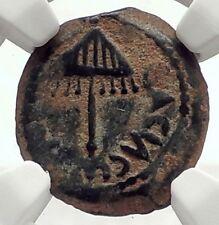 Herod AGRIPPA I JERUSALEM Biblical Claudius Time Ancient Greek Coin NGC i70927