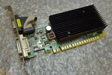 PNY GeForce 256MB Memory Computer Graphics Cards   eBay 256MB PNY GeForce 8400 GS PCI e DVI VGA Graphics Video Card GM84W0SN2E24P