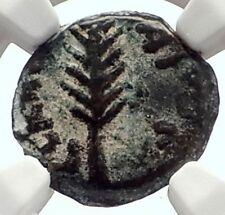 Biblical Jerusalem Saint Paul NERO Time PORCIUS FESTUS Ancient Roman Coin i70637