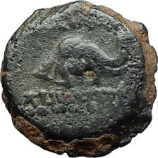 DEMETRIOS I Soter RARE R3 Ancient Seleukid Greek Coin HORSE ELEPHANT i75518