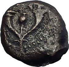 Jewish King ALEXANDER JANNAEUS Ancient Jerusalem WIDOW's MITE Bible Coin i62725