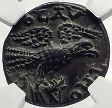 GALLIENUS 253AD Alexandria Troas Authentic Ancient Roman Coin EAGLE NGC i70142