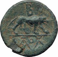 AMYNTAS of GALATIA KINGDOM Rare Ancient Greek Coin Hercules Nemean Lion i73505