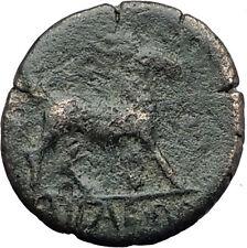 AIGAI in AEOLIS 2-1stCenBC Authentic Ancient Greek Coin APOLLO & GOAT i63142