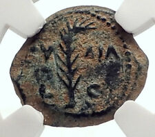 VALERIUS GRATUS Roman Jerusalem Prefect TIBERIUS LIVIA Biblical Coin NGC i70834