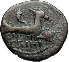 SEPTIMIUS SEVERUS 193AD Ancient Roman Coin PARIUM MYSIA Capricorn ZODIAC i67195